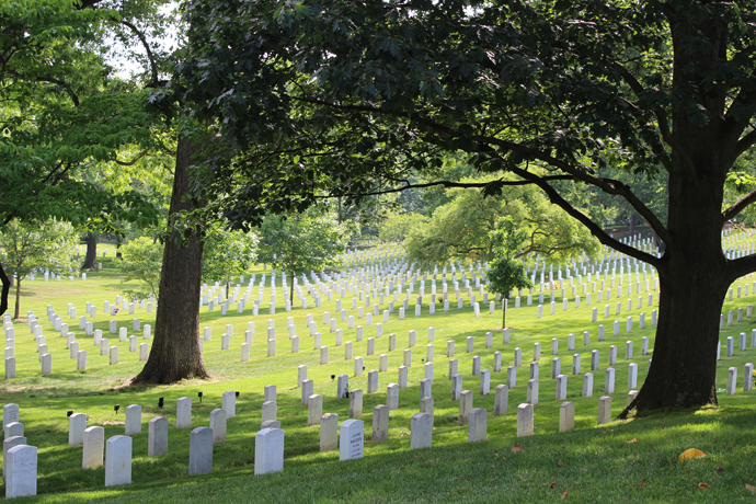 Arlington in the Shade!.
